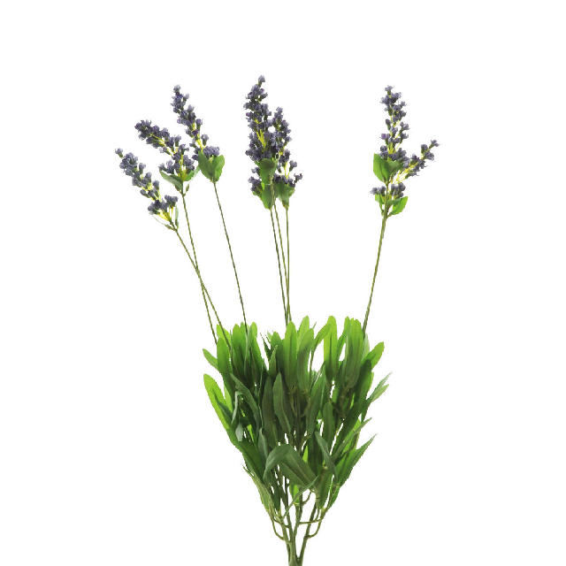 he013 Lavender spray (215-WS8B-2224)