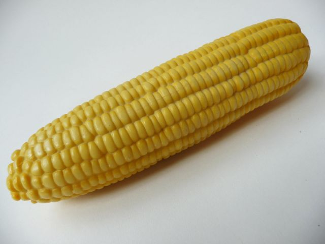 vp118 Corn on cob 2011